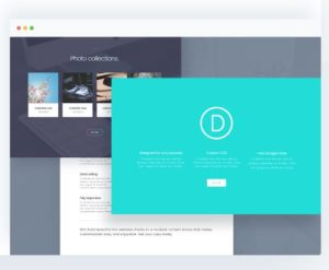 divi screen capture