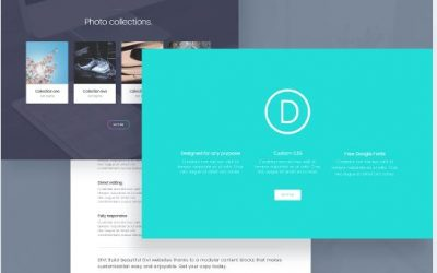 WordPress theme review-Divi Theme